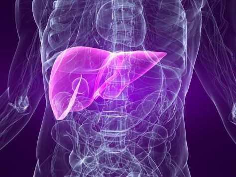 Obat Hepatitis Paling Mujarab